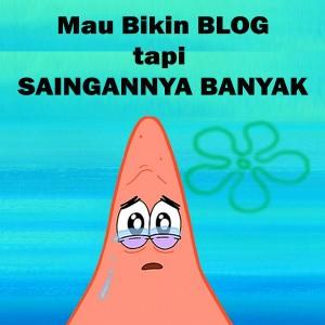 Niche Blog Laris